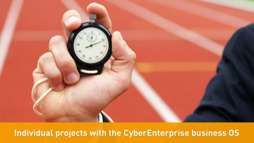Individual projects with the CyberEnterprise business OS